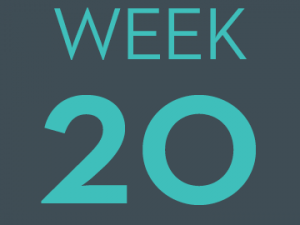 #CountMeIn Call to Action - Week 20: Commit to Disrupting Racism