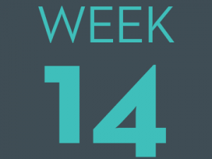 #CountMeIn Call to Action - Week 14: Equitable Workplace Policies